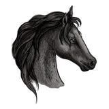 Retrato preto do esboço da cabeça de cavalo Imagens de Stock