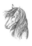 Retrato preto do esboço do mustang do cavalo Fotografia de Stock