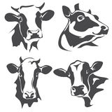 Retrato principal de la vaca libre illustration