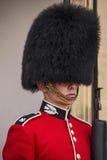 Retrato real británico del guardia Imagen de archivo