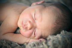 Retrato recém-nascido Fotografia de Stock Royalty Free