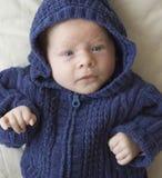 Retrato recién nacido Fotos de archivo libres de regalías