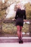 Retrato sexual de una muchacha rubia joven Imagen de archivo libre de regalías