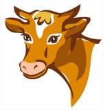 Retrato sonriente marrón brillante de la vaca Fotos de archivo libres de regalías