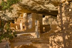 Retrato Spruce da casa na árvore, Mesa Verde NP foto de stock