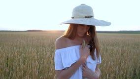 Retrato surpreendente da mulher bonita que está no campo do trigo dourado maduro filme