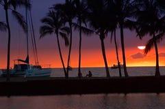 Retrato tropical do por do sol Fotografia de Stock Royalty Free