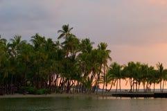 Retrato tropical do por do sol Imagem de Stock Royalty Free