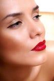 Retrato una señora joven atractiva Imagen de archivo