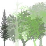 Retrato verde para felicitações ilustração royalty free
