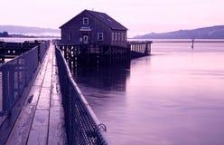 Retratos de la costa de Oregon Imagen de archivo libre de regalías