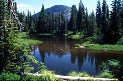 Retratos de Oregon Imagens de Stock Royalty Free