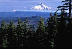 Retratos de Oregon Imágenes de archivo libres de regalías