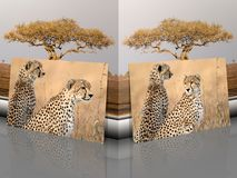 Retratos del jubatus del Acinonyx del guepardo con paisaje africano