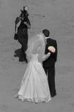 Retratos do casamento Fotografia de Stock