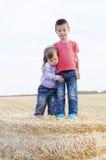 Retratos do irmão e da irmã junto Imagens de Stock