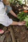 Retratos do jardim Foto de Stock Royalty Free