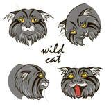 Retratos selvagens dos gatos da floresta, grupo, ilustração do vetor Imagem de Stock