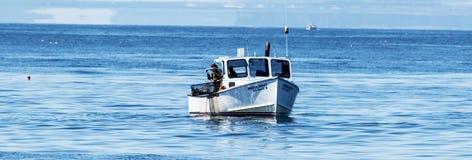 Retreiving hummerfällor för havet i Maine Royaltyfri Foto