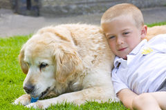 Retriever and boy Royalty Free Stock Photos