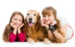 Retriever and girls Stock Image