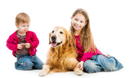 Retriever and kids Stock Photography
