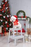 Retrieverwelpe nahe Weihnachtsbaum lizenzfreies stockbild