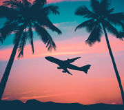 Retro Airliner With Palm Trees Royalty Free Stock Photo