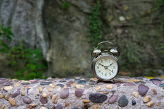 Retro alarm clock on stone and plant. Background Royalty Free Stock Images