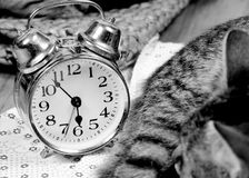 Retro alarm Royalty Free Stock Images