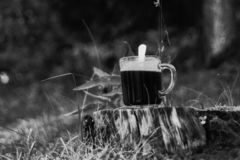Retro analog photo of the cup of the coffee on the tree stump. stock images