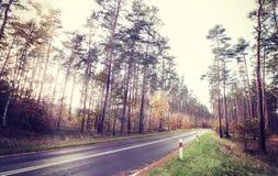 Retro- angeredetes Bild der Weinlese einer Straße im Wald Stockfotografie