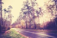 Retro- angeredetes Bild der Weinlese einer Straße im Wald Lizenzfreie Stockfotos