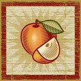 Retro apple. With a slice on wooden background. Vector illustration in woodcut style Stock Images