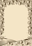 Retro apple vertical brown frame Stock Images