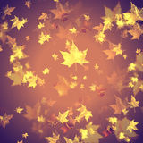 Retro autumn background Royalty Free Stock Photo