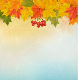 Retro autumn background with colorful leaves. Stock Photography