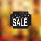 Retro Autumn Sale för vektor typografi Fotografering för Bildbyråer