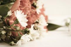 Retro av blomman Arkivfoton