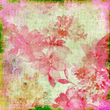 Retro background. Background in grunge style with pink flowers Royalty Free Stock Photos