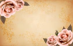 Retro background with beautiful pink roses with bu Stock Images