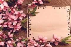 Retro background with branches pink flowers royalty free stock photo