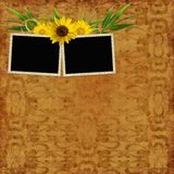 Retro background with decorative frames Royalty Free Stock Images
