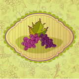 Retro background with grape Stock Image