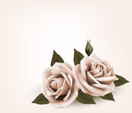 Retro background with pink roses. Royalty Free Stock Photos