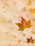 Retro beige autumn background Royalty Free Stock Photo