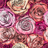 Retro Bezszwowy wzór z Wzrastał kwiaty Zdjęcia Royalty Free