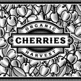 Retro bianco di Cherry Harvest Label Black And Fotografia Stock Libera da Diritti