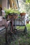 Retro bicicletta d'annata in villa toscana rustica Immagine Stock