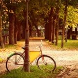 Retro Bicycle on nature background Stock Photos